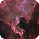 NGC 7000 North America Nebula NB,                                Richard Pattie