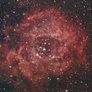 Rosette Nebula,                                AGameiro
