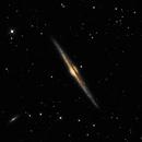 NGC 4565 - The Needle Galaxy,                                Tim