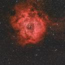 Rosette Nebula,                                Gianluca Galloni
