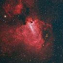 M17 - Swan Nebula,                                Tim Lewis