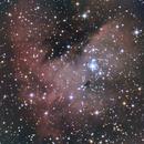 pacman nebula , ngc 281,                                adrian-HG