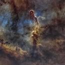 IC 1396A - Elephant's Trunk Nebula - Starless,                                nerdybeardo