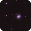 M 61 with SN 2020jfo,                                David Redwine