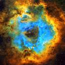 NGC2244 Rosette Nebula (SHO),                                Andy Elliott