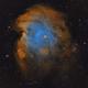 NGC 2175,                                Ari Jokinen