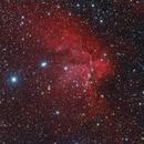 NGC7380 - Wizard nebula in Cepheus,                                Stellario