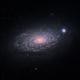 M63, The Sunflower Galaxy,                                Gabriel Cardona