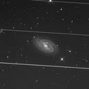Starlink is littering our skies,                                Albert van Duin