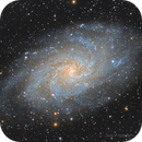 M33 Galassia del Triangolo  ,                                Elio - fotodistel...