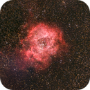 A bit late for Valentines day but hey: The Rosette Nebula (Caldwell 49),                                Julian Mochayedi