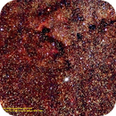 Deneb im Sternbild Schwan mit dem Nordamerikanebel NGC 7000,                                Hans-Peter Olschewski