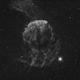 IC443 - Jellyfish Nebula,                                Nico Carver