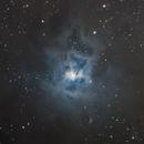 NGC 7023, the Iris Nebula,                                Arnaldo Lopez