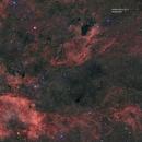 vdB130 NGC6888 e dintorni,                                Federico Bossi