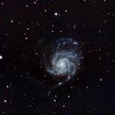 M101 Pinwheel Galaxy,                                David Rees