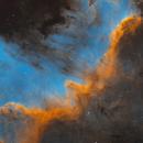 Cygnus Wall,                                Andrew Burwell