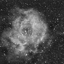 NGC2237 HA,                                Juergen