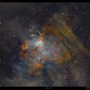 NGC 1491,                                Metsavainio