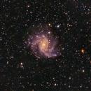 NGC 6946,                                H.Chris