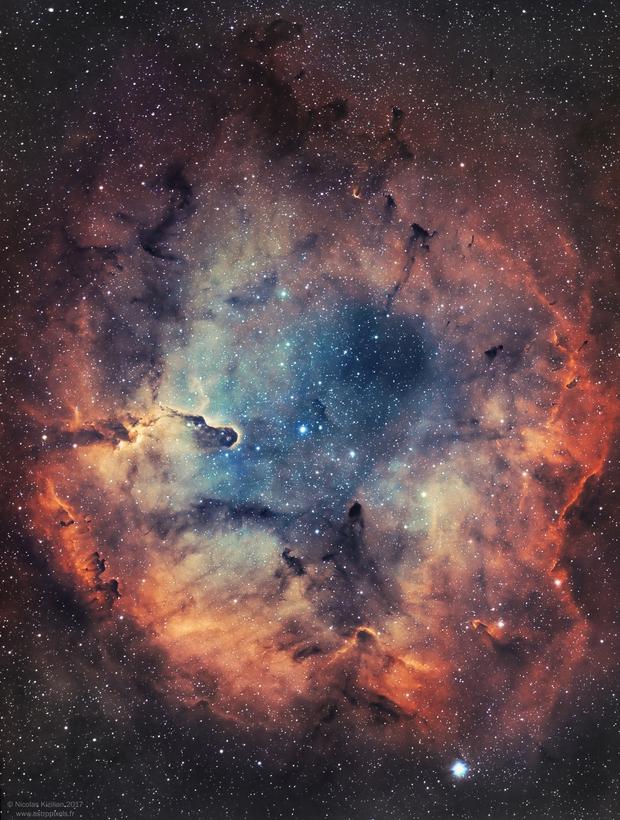 IC1396 and the Elephant's Trunk Nebula [Narrowband Bi-color Ha/OIII],                                Nicolas Kizilian