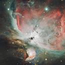 M42 - Orion Nebula,                                Andre van Zegveld