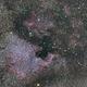 North America Nebula,                                Dcox17