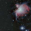 Orion Nebula ,                                Senn