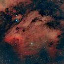 IC 5070 - Pelican Nebula,                                Tom Davis