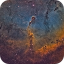The Elephant's Trunk Nebula IC1396 in SHO palette,                                Chad Andrist