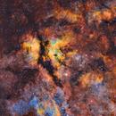 IC 1318 - La nébuleuse du papillon - SHO,                                Séb GOZE