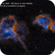 IC 1805 & IC 1848 The Heart and Soul Nebulae   SHO,                                Paul Borchardt