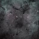 IC1396,                                Jose Luis Ricote