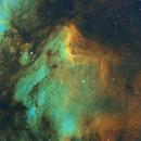 IC 5070 Pelican Nebula in SHO,                                Yizhou Zhang