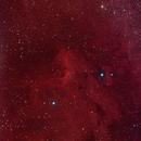 pellican nebula,                                dan48