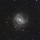 M83,                                David Cheng