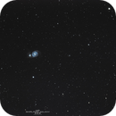 M51, The Whirlpool Galaxy Wide FOV Group, 05-06-2019,                                Martin (Marty) Wise