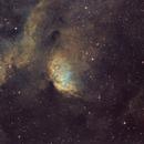 Sh2-101 - The Tulip Nebula (with Cygnus X-1 bow shock),                                Arun H.