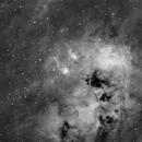 IC 410- Tadpoles Nebula- Hydrogen,                                Matt Harbison