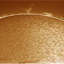 sol 8-3-2015,                                jose