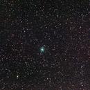 Cometa 46p/ witarnen - 14/12/2018,                                Jorge Oliveira
