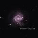 Super Nova AT2020JFO in M61,                                Alan Coffelt