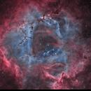 Rosette Nebula SHO,                                Zhuoqun Wu