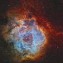 The Rosette Nebula (NGC2237) imaged in SHO,                                Andrew Klinger