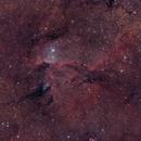 NGC 6188,                                Sebastian Colombo