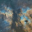 Butterfly Nebula (IC1318),                                Dave Swenson