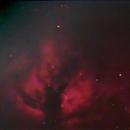 NGC 2024 Flame Nebula,                                Mike Pelzel