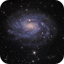NGC 300 - Spiral Galaxy in Sculptor,                                Terry Robison