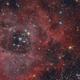 NGC 2237-Rosette Nebula,                                Natalya Frolova B...