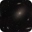 M86 and part of Markarian's Chain,                                t-ara-fan